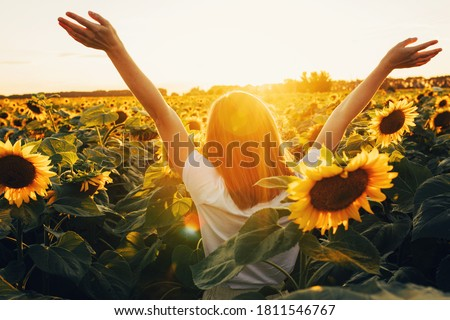Sunny beautiful picture of young cheerful girl holding hands up in air and looking at sunrise or sunset. Stand alone among field of sunflowers. Enjoy moment Foto stock ©