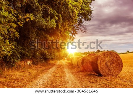 Sunny Countryside Road in July. Austria, Europe Countryside Road with Hay Bales