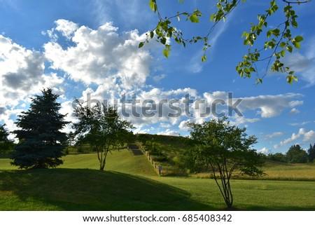 Sunny Day #685408342