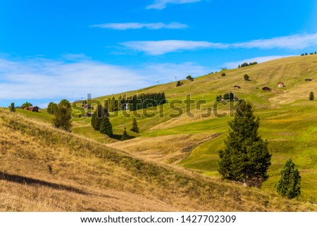Sunny day for hiking and photographing. Picturesque grassy hills with tourist shelters and piers of the ski lift. Alpe di Siusi is plateau in the Dolomites, Italy. The concept of walking tourism