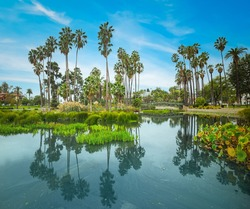Sunny day in Echo park lake, Los Angeles. Southern California, USA