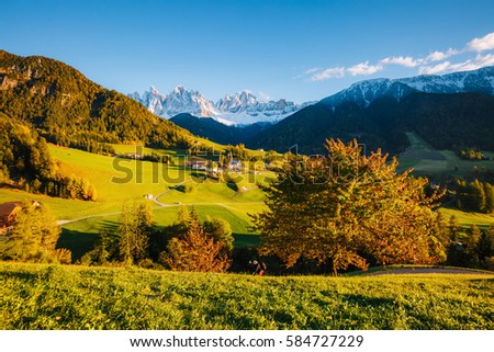 Sunny day in Ssnta Magdalena village. Picturesque and gorgeous scene. Location famous place Funes valley, Odle Group, Dolomiti Alps. Province of Bolzano - South Tyrol, Italy. Europe. Beauty world.