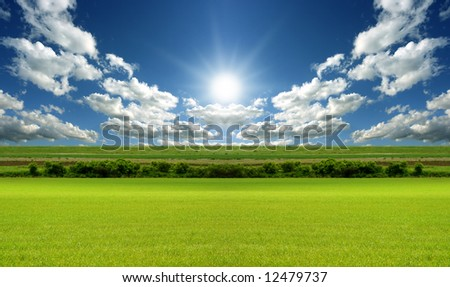 Sunny day with blue sky and green grass