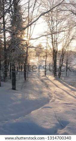 Sunny freezing day. #1314700340