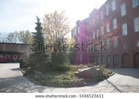 Sunny Garden on Sunny Day #1436523611