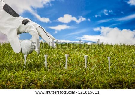 Sunny golf field with golf stuff