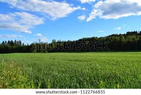Sunny landscape scene of country land - Kongsvinger, Norway #1122766835