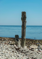 sunny landscape with rocky sea shore and old wooden piles, Baltic sea shore, Saaremaa, Sorves peninsula, Estonia