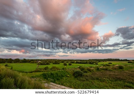 sunny meadow with flowers and green grass in summer at sunset #522679414