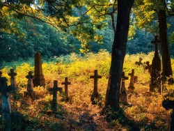 Sunny morning in an old abandoned cemetery. Stone crosses, ruins and graves.