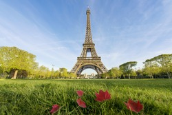 Sunny morning in Paris and Eiffel Tower, Paris, France.