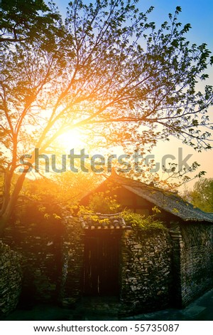 Sunny morning in village