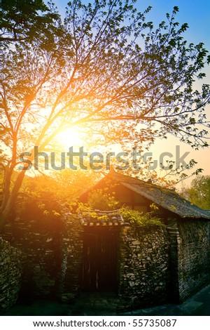 Sunny morning in village