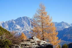 Sunny picturesque autumn alpine Dolomites rocky  mountain view from hiking path from Giau Pass to Cinque Torri (Five pillars or towers) rock famous formation, Sudtirol, Italy.