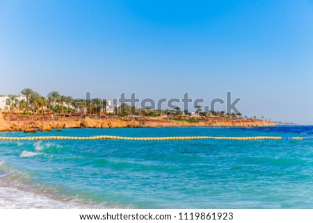 Sunny resort beach with palm tree at the coast shore of Red Sea in Sharm el Sheikh, Sinai, Egypt, Asia in summer hot. Bright sunny light #1119861923