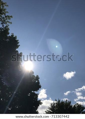 Sunny Sky #713307442