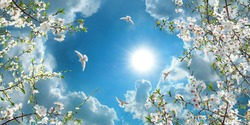 sunny sky with spring flowers and flying doves