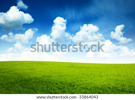 sunny spring day and green field