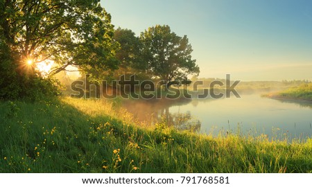 Sunny spring morning on meadow near river. Scenic rural landscape. Spring sunny background.