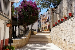 Sunny street with flowers in the old city of Alicante