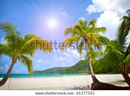 Sunny tropical beach in the Islands