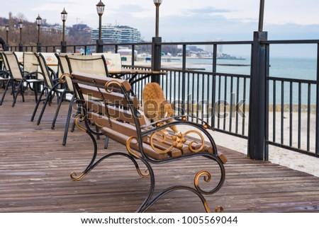 Sunny winter day at seaside. Odessa, Ukraine