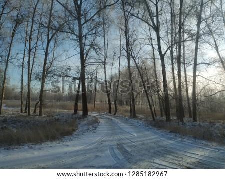 sunny winter landscape #1285182967