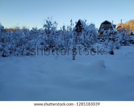 sunny winter landscape #1285183039