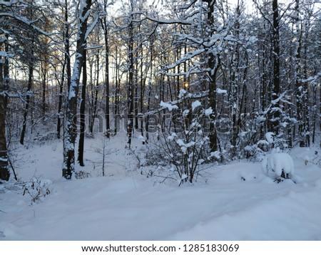 sunny winter landscape #1285183069