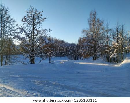sunny winter landscape #1285183111