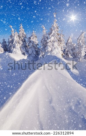 Sunny winter landscape with snow dunes in a mountain forest