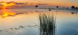 Sunrise above a river on foggy summer morning, Beautiful European Landscape, Jurmala, Latvia