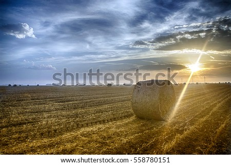 Sunrise and bale of hay on the field #558780151