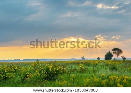 Photo of  Sunrise and prairie, Prairie Ridge State Natural Area, Marion County, Illinois.