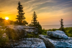 Sunrise at Bear Rocks Preserve, in Dolly  Sods Wilderness, Monongahela National Forest, West Virginia.
