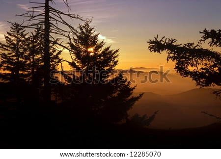 Sunrise At Clingman's Dome, Great Smoky Mountains National Park