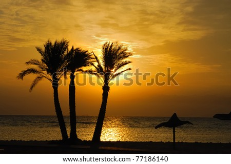 Sunrise at Sinai coast.
