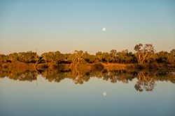 Sunrise at the Birdsville Billabong with a full moon on a calm morning with amazing reflections, Outback Queensland, Australia
