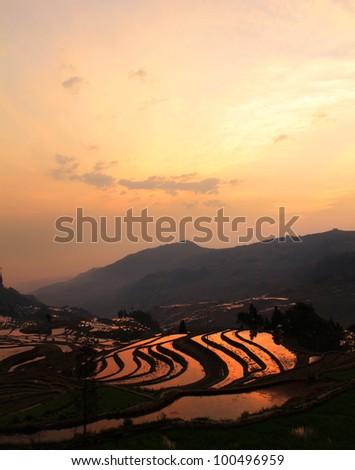 Sunrise at the Terraced Rice Fields of Yuan Yang, Yunnan Province, South West China