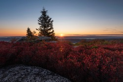 Sunrise cresting over the horizon on an early October morning from the Dolly Sods Wilderness on the Appalachian Front in West Virginia.