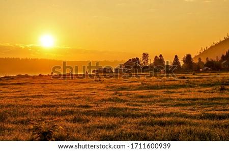 Sunrise field nature landscape. Rural farm field sunrise. Sunrise scene in farm field. Farm field sunrise landscape