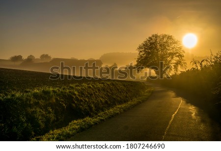 Sunrise fog on rural road. Rural sunrise mist road. Sunrise road view. Rural road sunrise fog
