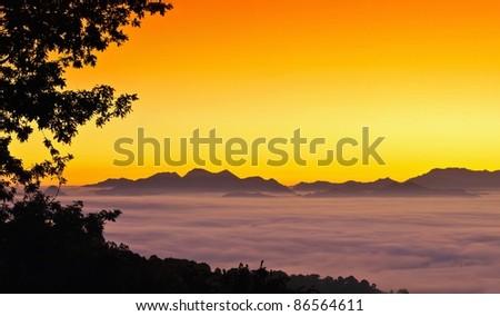 Sunrise from fog.