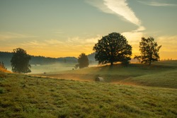 Sunrise in Bohemian Switzerland from Vysoká Lípa. Beautiful landscape on a misty morning. Dramatic sunrise in the mountains. Wildlife scene from nature. Czech Republic
