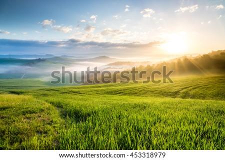 Sunrise in Crete Senesi region, Tuscany, Italy #453318979