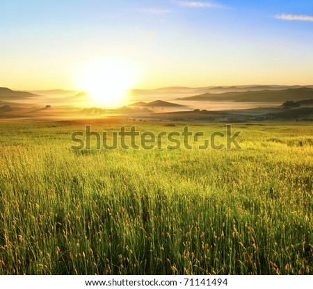 Sunrise in green rural field #71141494