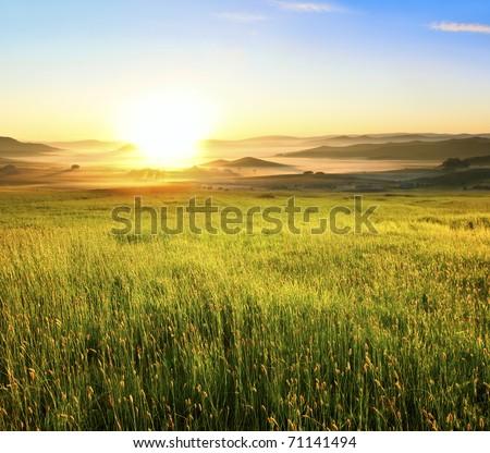 Sunrise in green rural field #71141494