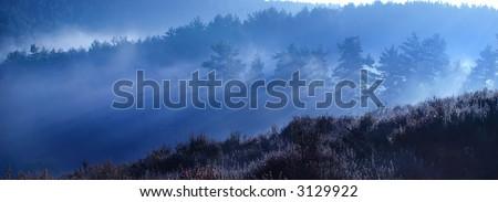 Sunrise in Hindhead