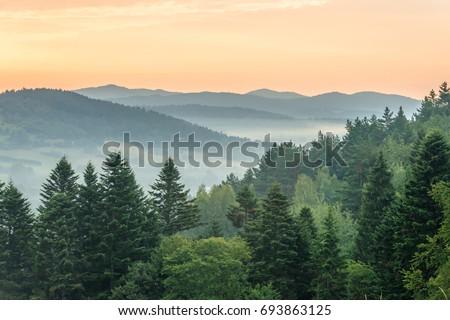 Sunrise in mountains near Ustrzyki Dolne #693863125