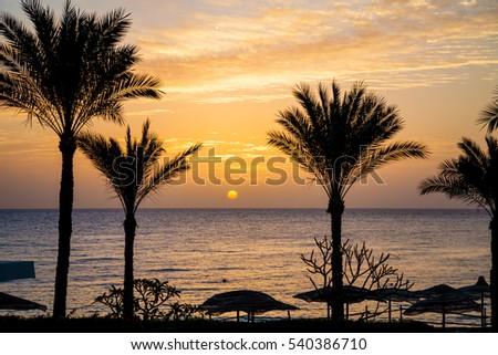 Sunrise in sharm el sheikh #540386710